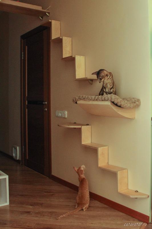 Полочки для кошек своими руками 15
