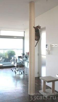 Комплекс для кошек. Домик для кошки. Когтеточка для кошек. Купить когтеточку.