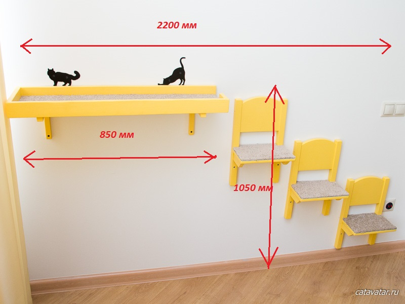 Oriental has got cats' furniture. Kitten's joy. Furniture workshop for cats CatAvatar. Furniture for cats.