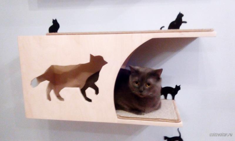 Домик для кошки. Дом для кота. Комплекс для кошек. Мебель для кошек.